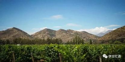 智利葡萄酒产区